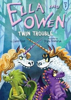 Twin Trouble book