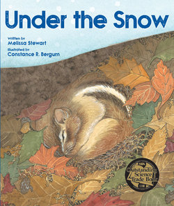 Under the Snow book