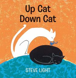 Up Cat Down Cat book