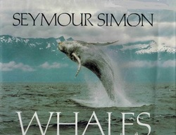 Whales book