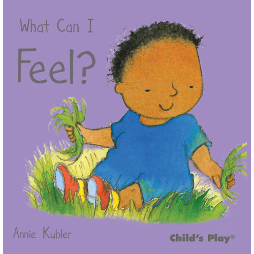 What Can I Feel? book
