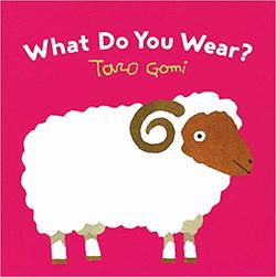 What Do You Wear? book