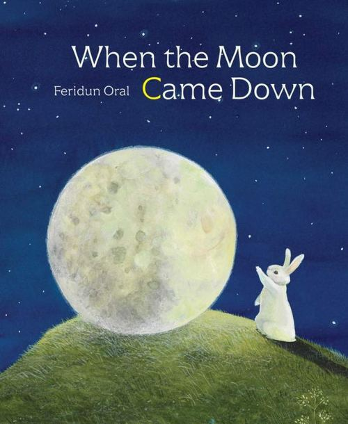 When the Moon Came Down book