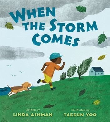 When the Storm Comes book