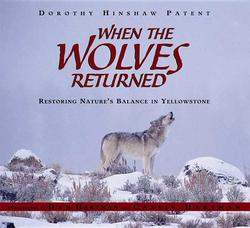 When the Wolves Returned: Restoring Nature's Balance in Yellowstone book