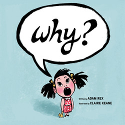 Why? book