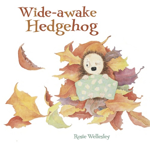Wide-awake Hedgehog book
