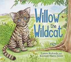 Willow the Wildcat book