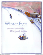 Winter Eyes book