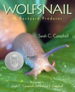 Wolfsnail: A Backyard Predator book