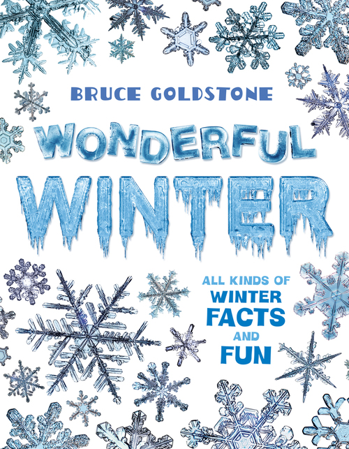 Wonderful Winter book