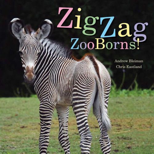 ZigZag ZooBorns! book