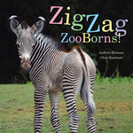 ZigZag ZooBorns! book
