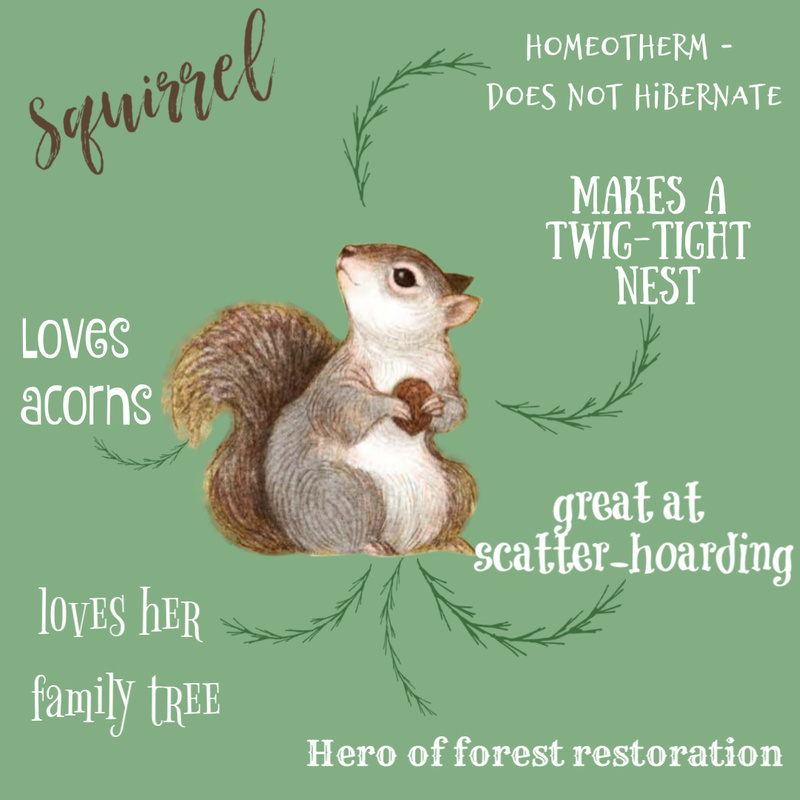 A peek at Squirrel